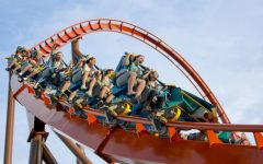 Roller Coasters as the New Medicine for Kidney Stones?