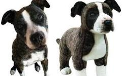 Cuddle Clones – Plush Versions of Your Pet