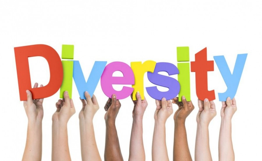 TUSDs Diversity Drama