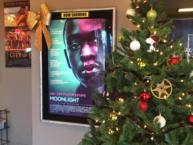 Moonlight, and Why Representation Matters