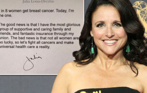 Veep & Seinfeld Star Julia Louis-Dreyfus Diagnosed With Breast Cancer