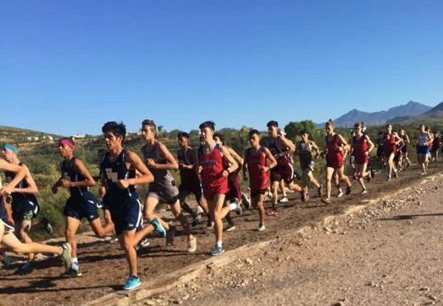 Cross Country: Sprinting to Success