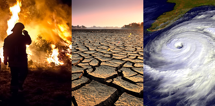 How to Help Slow Down Climate Change