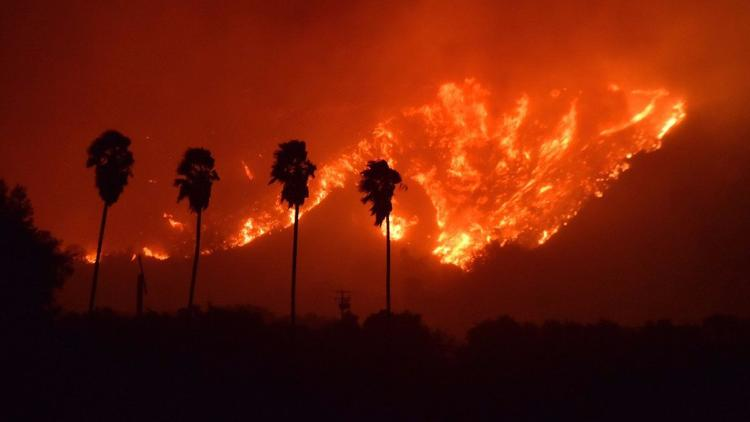 The Thomas Fire in Southern California - You Can Help