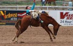 Activities To Do Over Rodeo Break