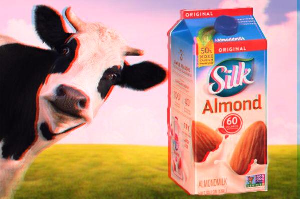 Stop Drinking Cow Milk!