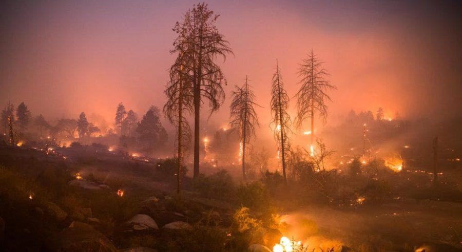 CALIFORNIA FIRES  Deaths: 91 Damage: 230,000+ acres Date: November 8- November 25th