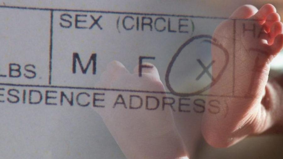 New York Now Offers Gender Neutral Birth Certificates
