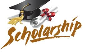 Senior Scholarship Opportunities