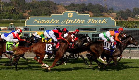 23 Racehorses Die in Santa Ana California
