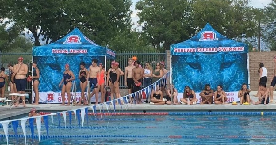 Swimmers+Take+Your+Mark
