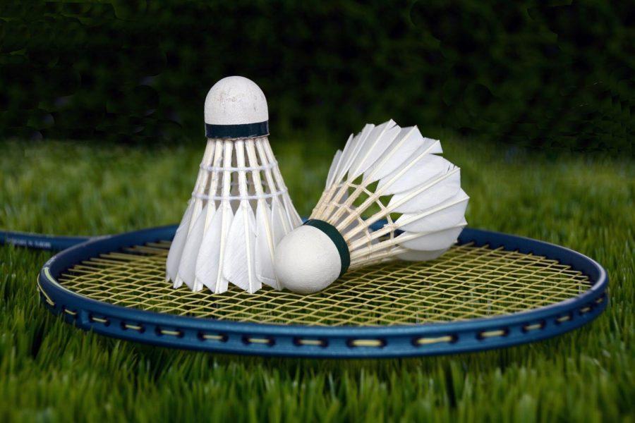 Badminton Online?