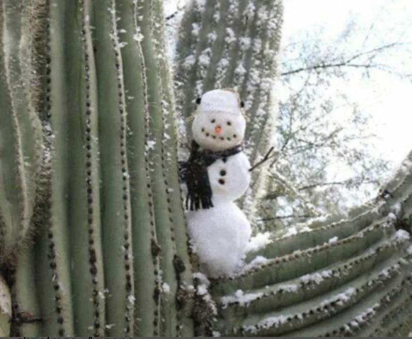 Crazy Weather Changes In AZ