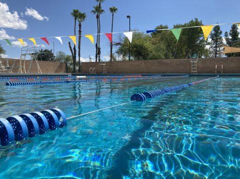 Sahuaros Swim Team Ready To Dive Into Action