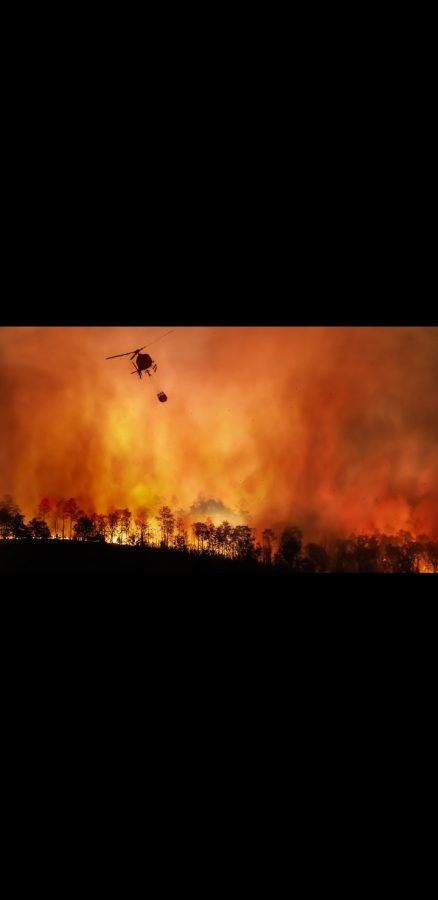 California's Northern Wildfires